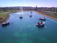 Barcas de remo. Parque Europa. Madrid.